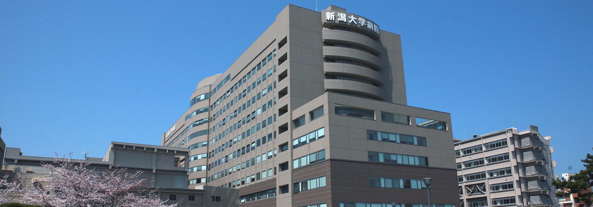 病院 新潟 大学 総合 医 歯学 スタッフ紹介